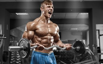 Size! The Mechanisms of Hypertrophy